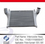 Intercooler Assy 1105111900047